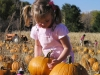 photo_pumpkin_patch2